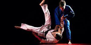 Индивидуальные тренировки по дзюдо